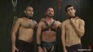 Good looking gay boys in amazing BDSM threesome