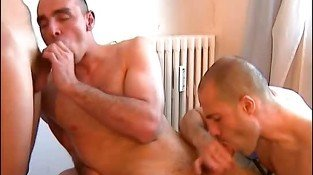 My assistant gets sucked in spite of him by 2 handsome masculines sport gys!